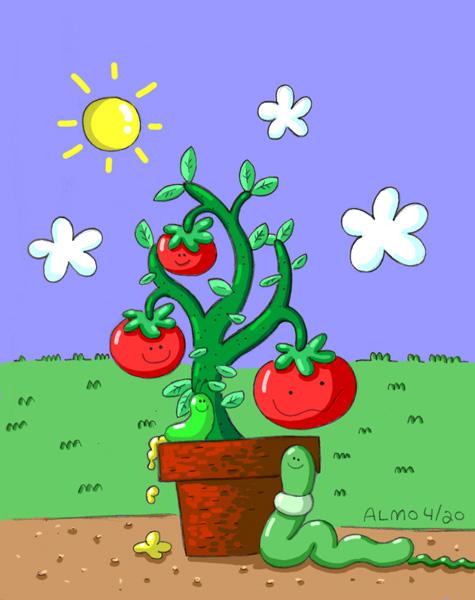 2013_04_20_potoftomatoes