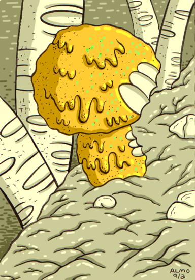 2013_09_02_mushroom