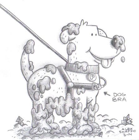 2014_03_14_muddydog