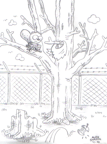 2014_04_16_fencesquirrel